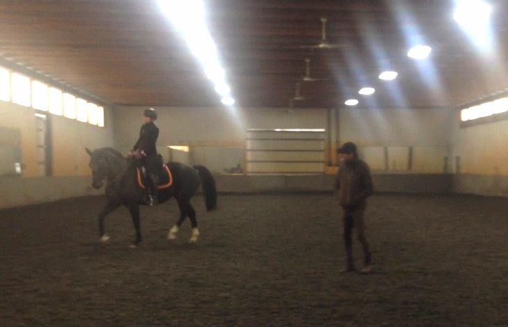 Clinic with Bruno