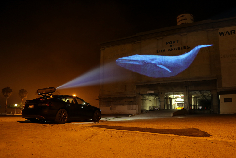 Specially-equipped vehicles with powerful projectors shed light on endangered species in  Racing Extinction