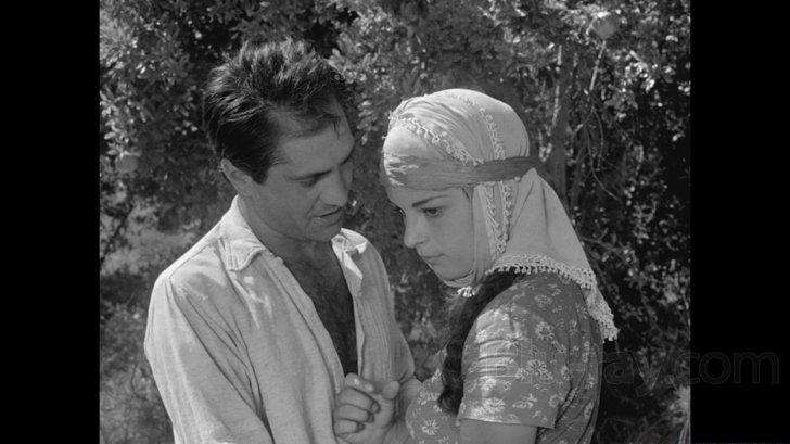 Dry Summer  (1963)