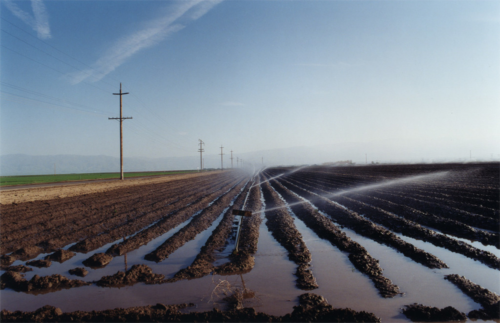 El Valley Centro  is made up of shots of California's Central Valley