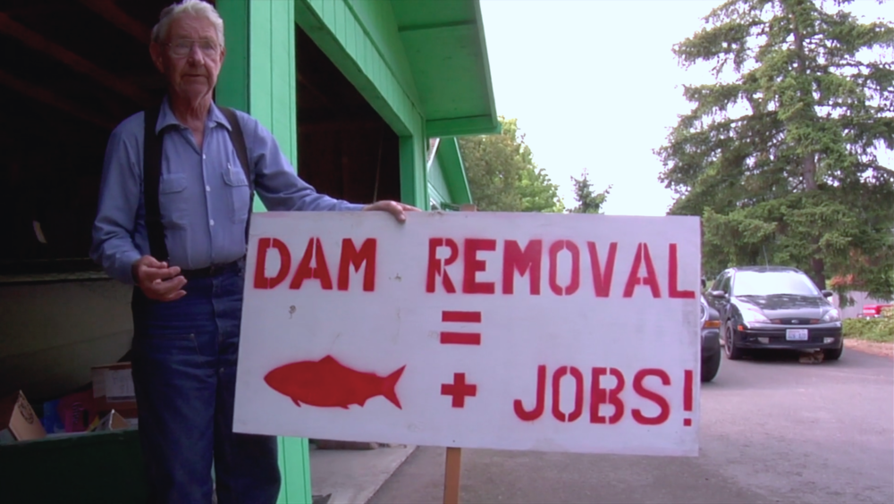 Remove-the-dams activism in The Memory of Fish.