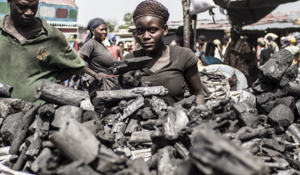 Charcoal for sale in a Haitian market in  Death by a Thousand Cuts.