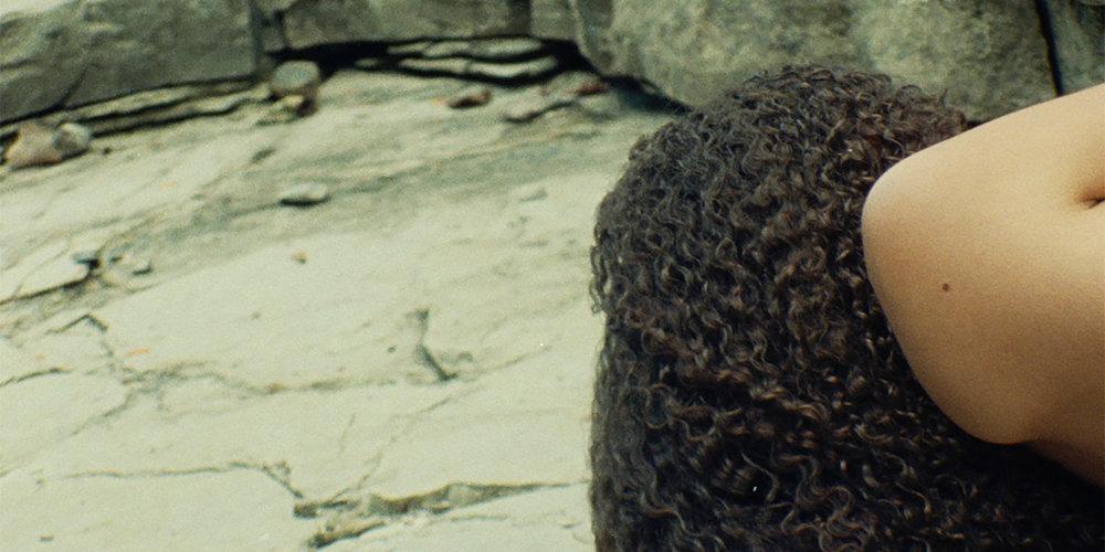 VENUS DELTA  (2016)