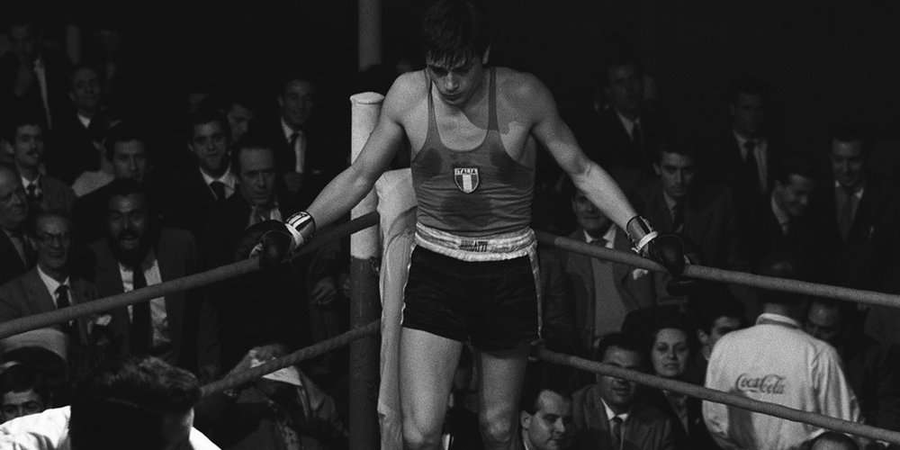 Rocco in the ring.