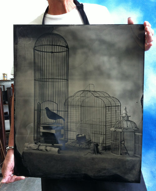 thomas gibson studio flight cages tintype