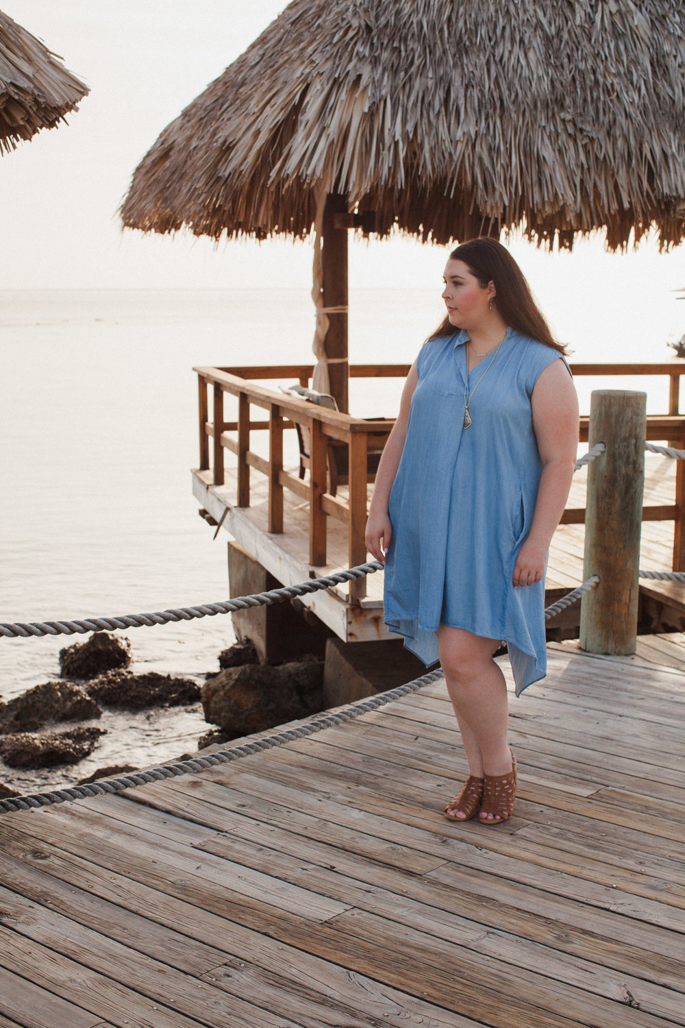 Plus Size Chambray Dress 5.jpg