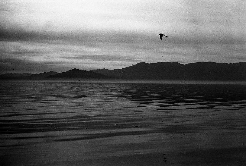 Salton Sea, 2013.