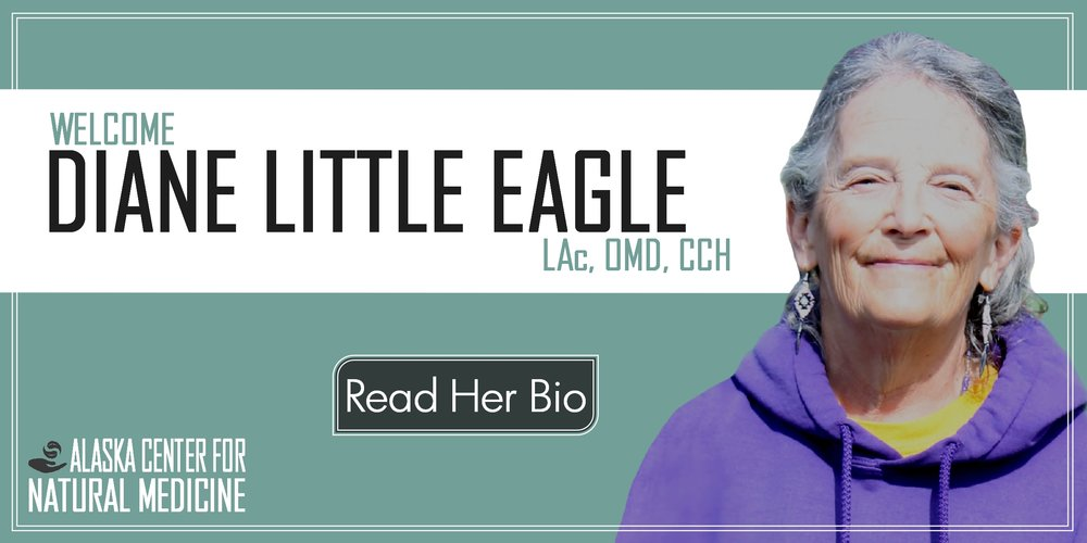 welcome_little_eagle_banner_001.jpg