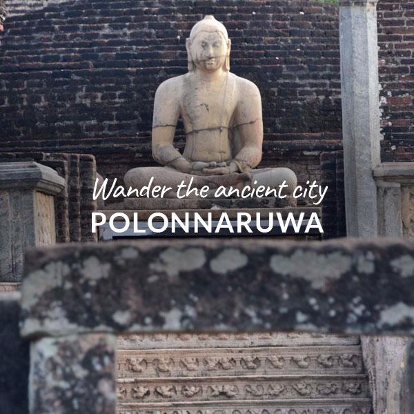 Wander-Polonnaruwa.jpeg