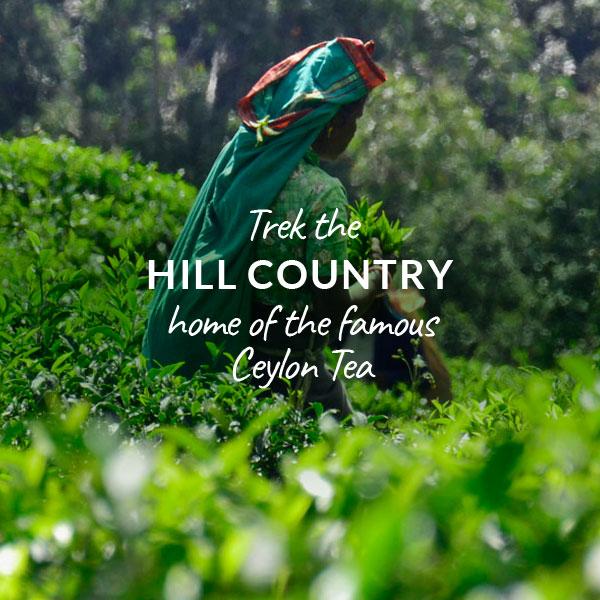 Indies-Adventures-Trek-Hill-Country.jpg