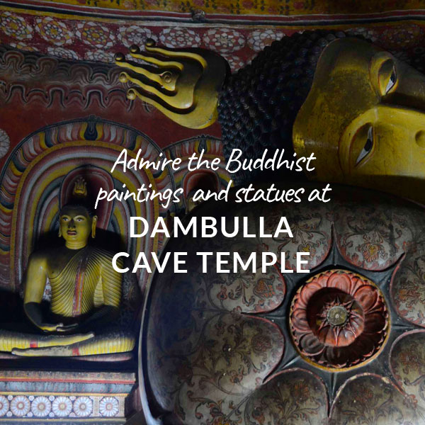 Indies-Adventures-Admire-dambulla-cave-temple.jpg