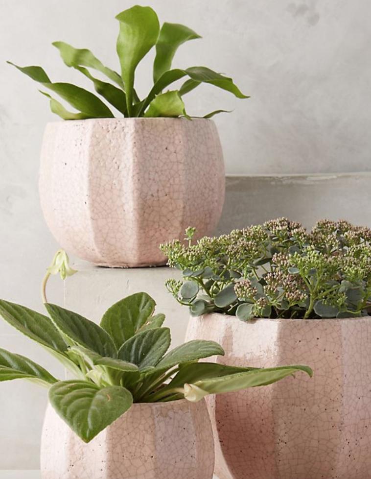 Terracotta Pot - $12-$34