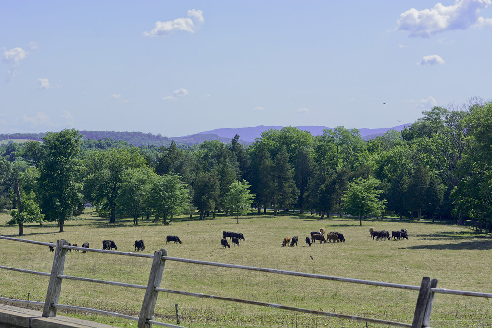 The dairy farm, purchased by the family in 1929, was put on the National Register for Historic Places in 1992.