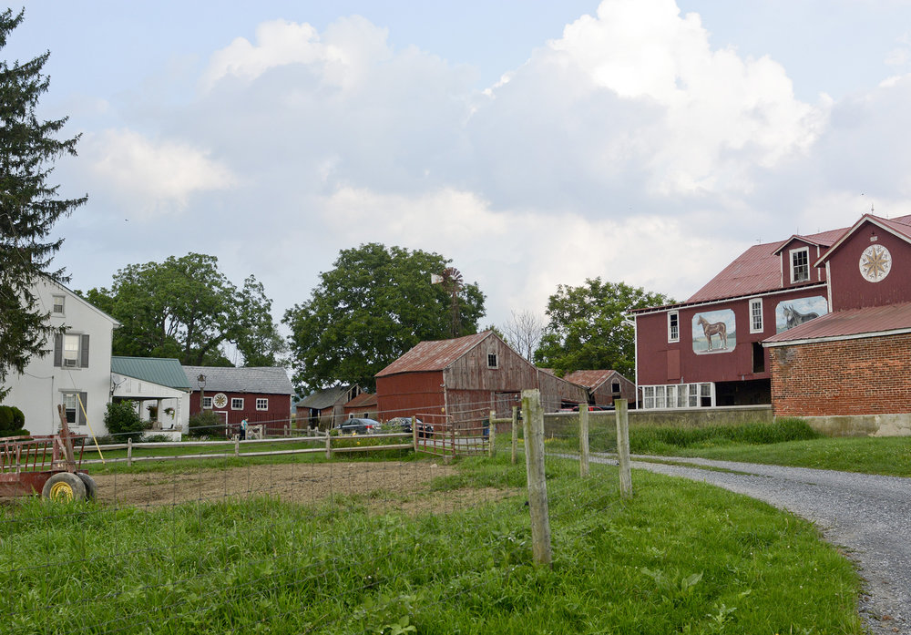 The Gauker Family Farm in Fleetwood on July 18, 2017. There have been 10 generations that have worked on the farm, with the 10th generation being 2 and a half years old, Callie.
