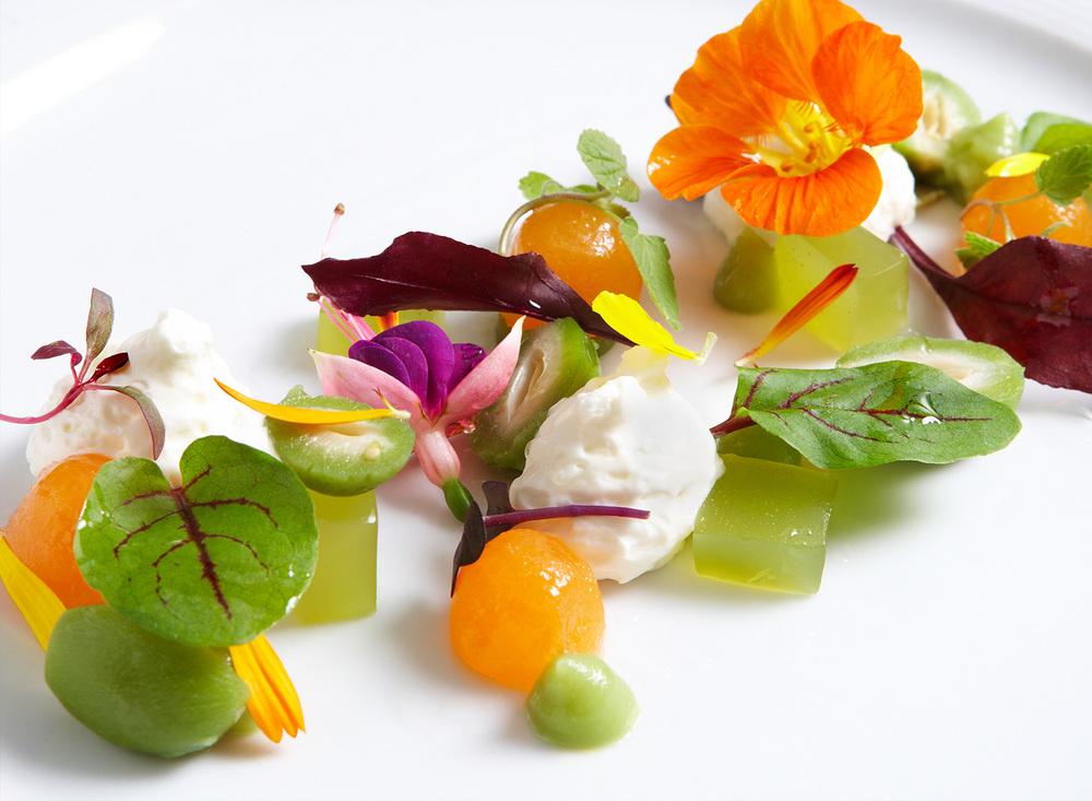Melon, Tomato, Herbs, Flowers