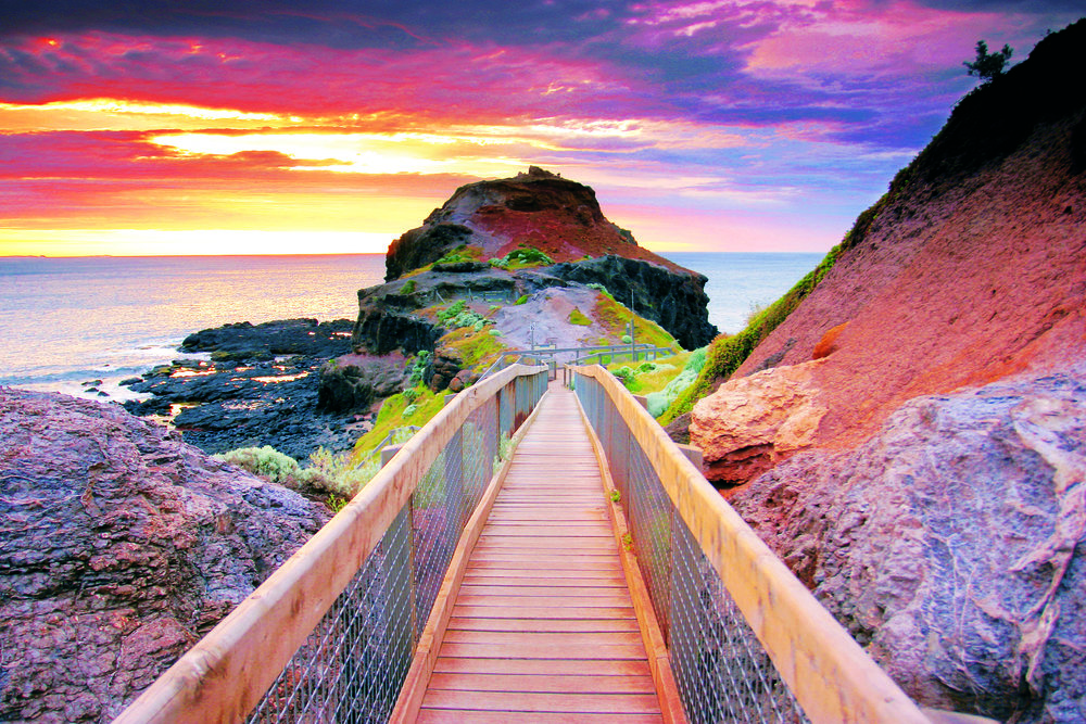 Cape Schanck Boardwalk (MPSC).jpg