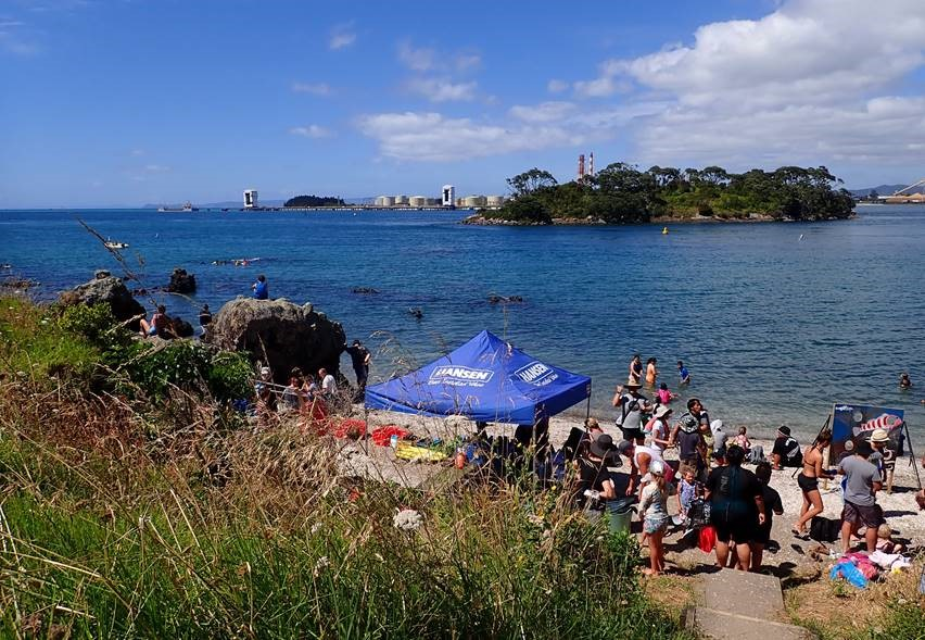 The Set Up at Reotahi Marine Reserve.jpg