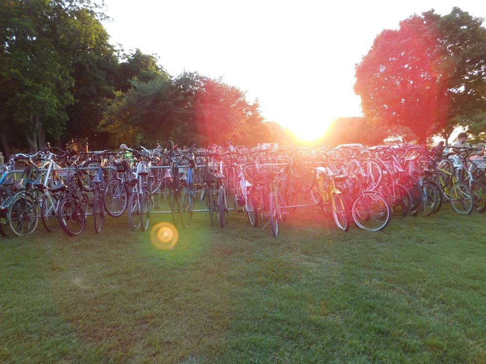 Lotsa Bikes