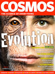evolution cosmos.jpg