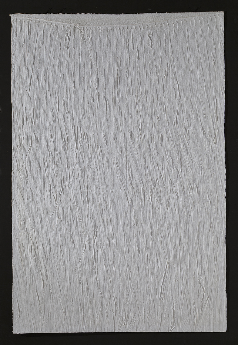 "Palm print   in reverse,  2016, cast cotton paper, 60"" x 40"""