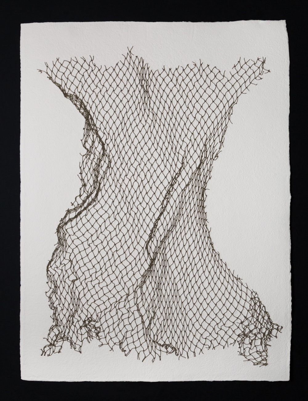 "Net II , 2017, cotton paper and nylon net, 40"" x 30"""
