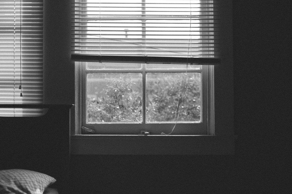 san francisco bay window-1.jpg