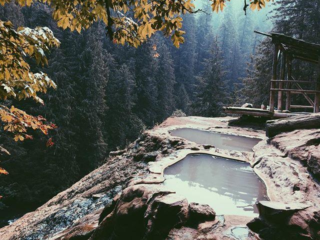 Autumn breeze 🍂