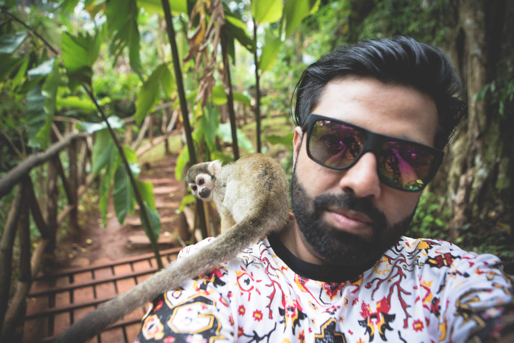 Dominican Republic Monkey Jungle by Atif Ateeq-1