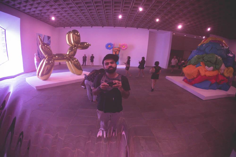 atif ateeq Jeff Koons Whitney Museum-7