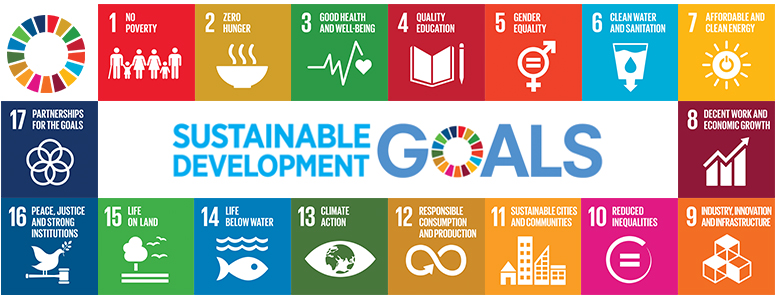 UN Sustainable Development Goals - Africa Shared Value Summit 2018