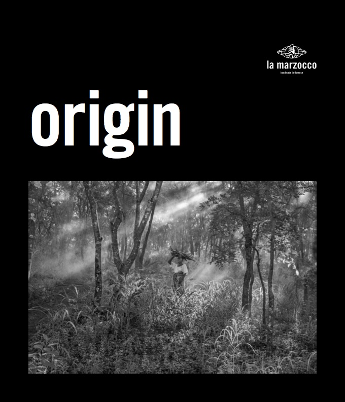 Origin by Jakob de Boer copy (dragged).jpg
