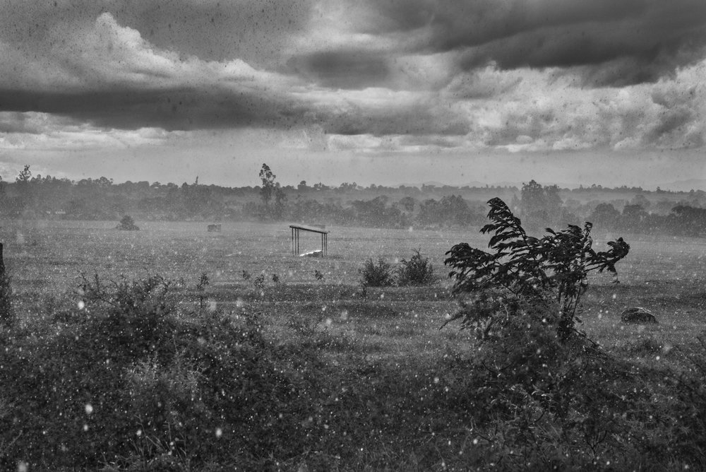 Rain, Tanzania,  2015