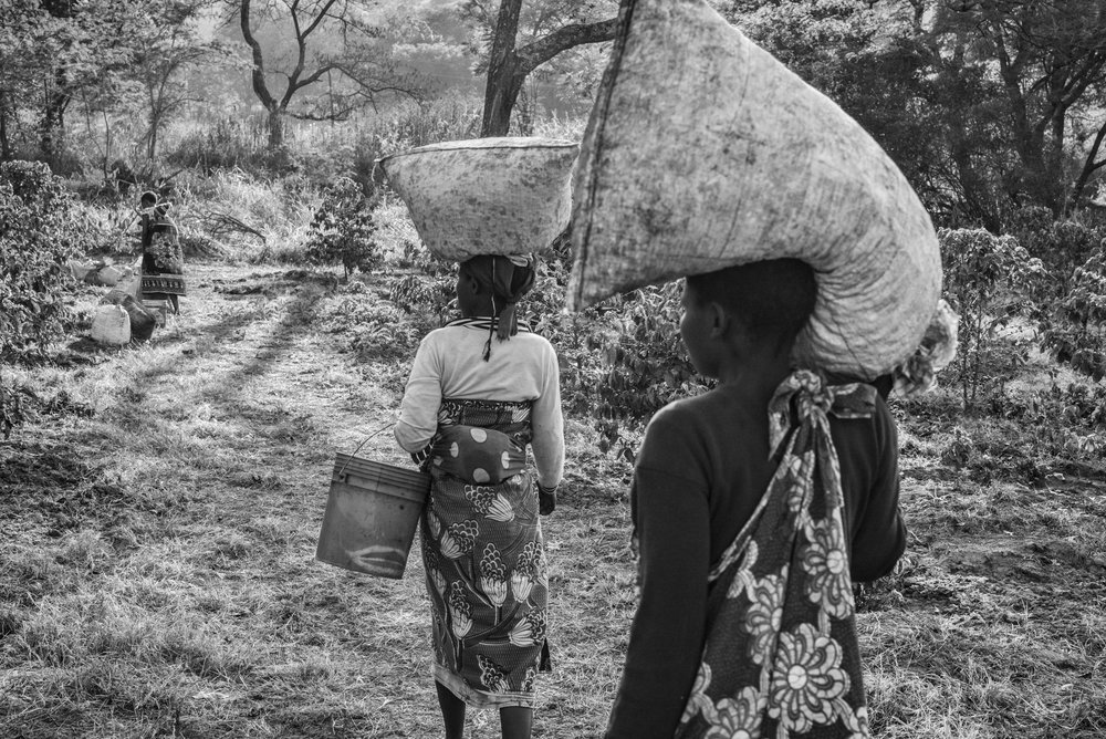 Returning Home, Tanzania,  2015