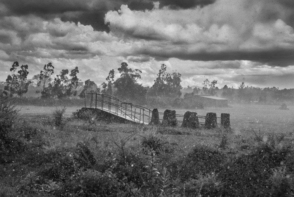 Stillness, Tanzania,  2015