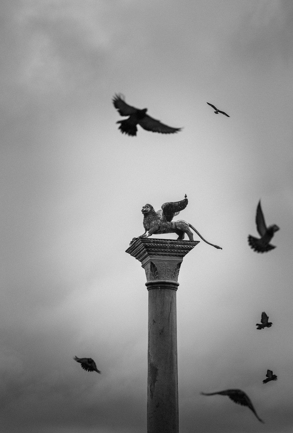 Symbols, Venice 2014