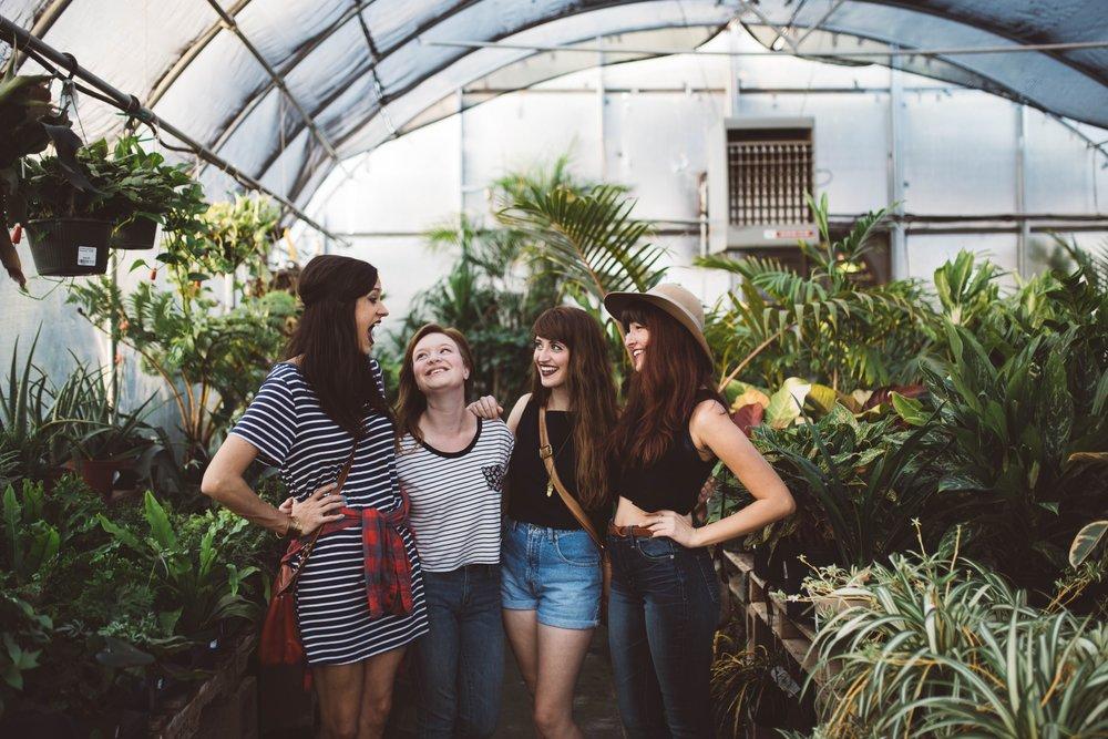 blogger cliques