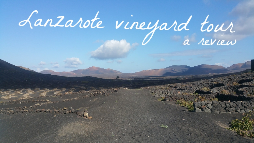 lanzarote eco insider review