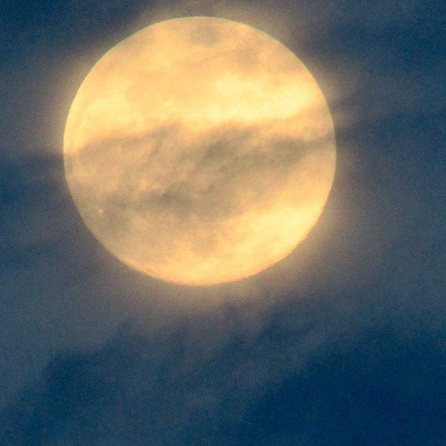 #fullmoon #flowermoon last night #livefromthepoint #beachlife #moon