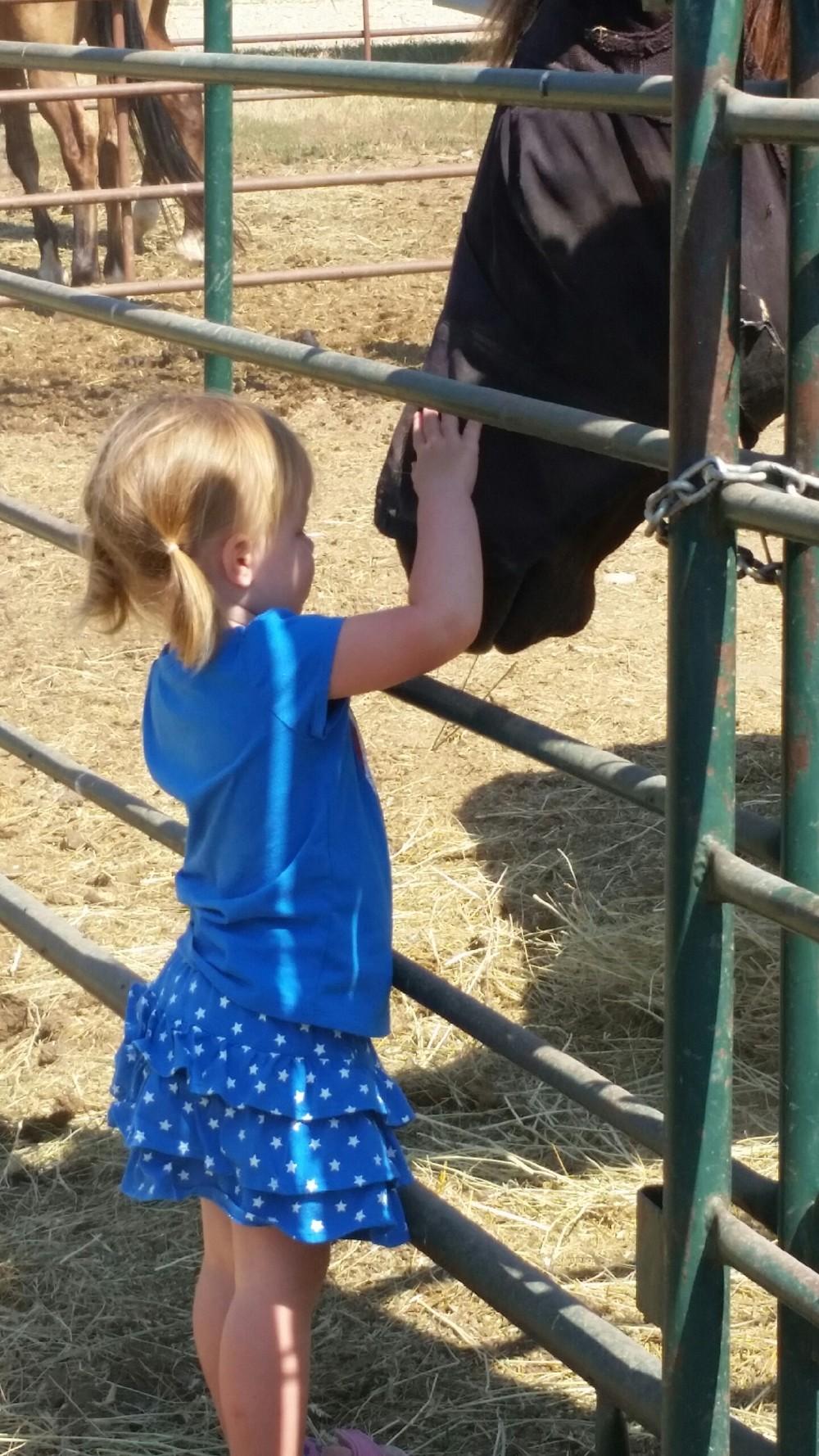 Vivian & Horse 2015.jpeg