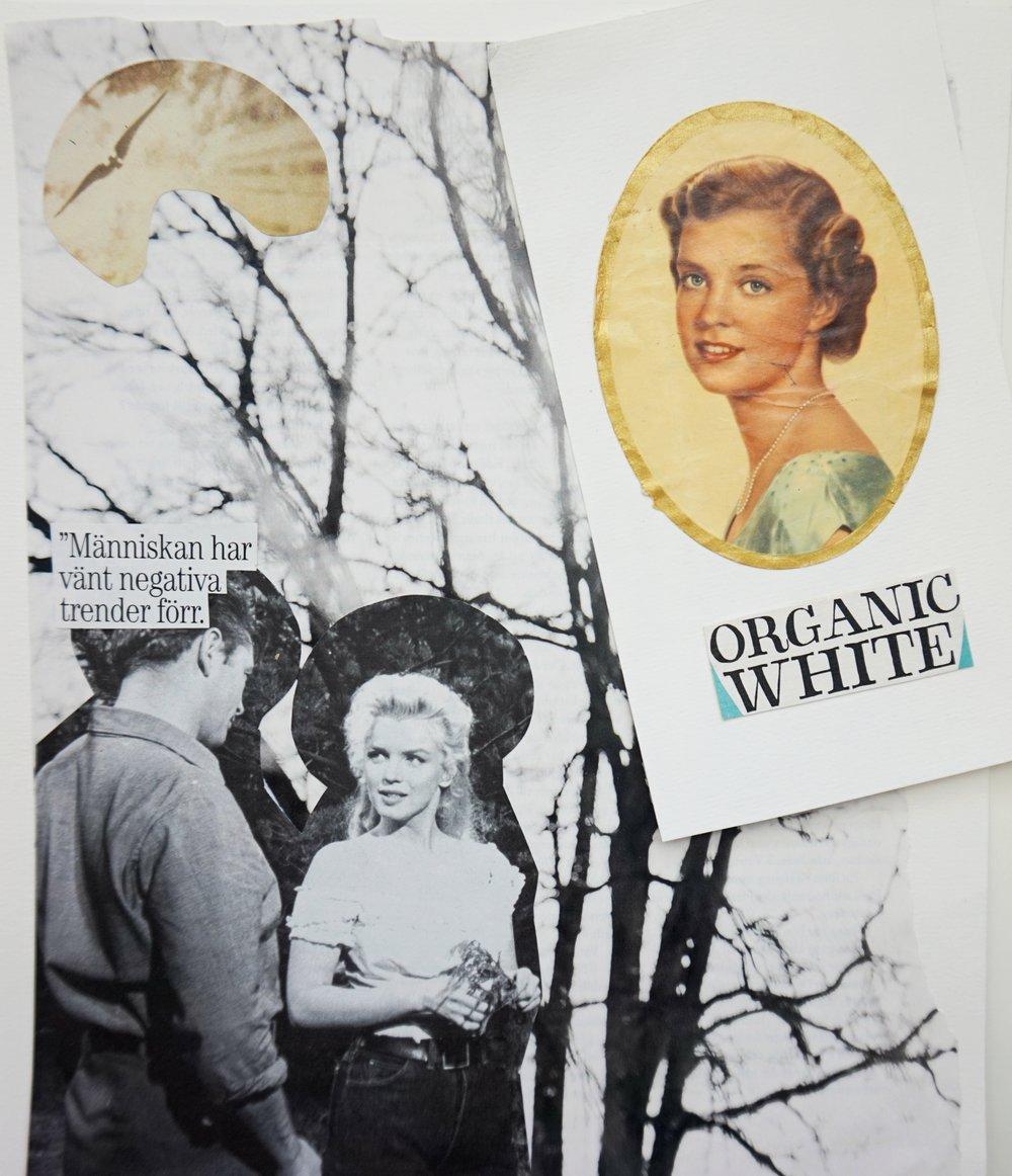 Skande no.3 + Organic white no.1 (bokmärke):  Människan har vänt negativa trender förr.