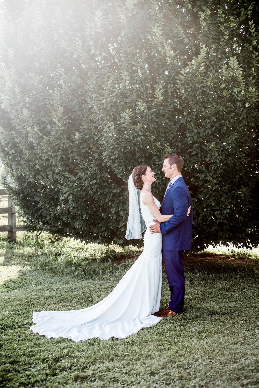 intimate summer vineyard wedding