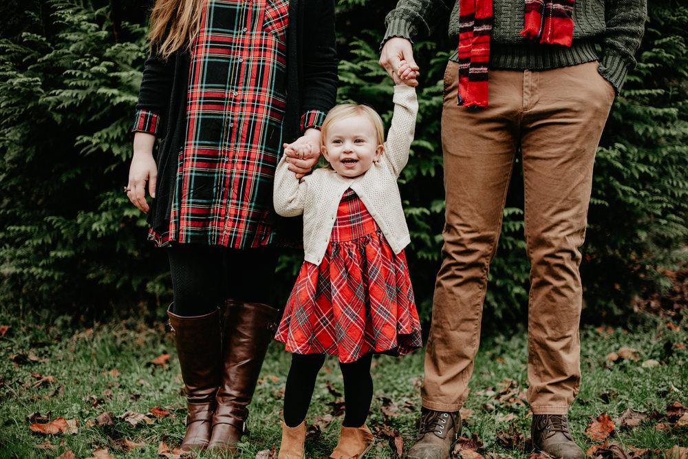 christmas family photos roanoke