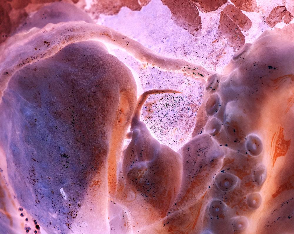 tentacle by nat urazmetova / work in progress.jpg