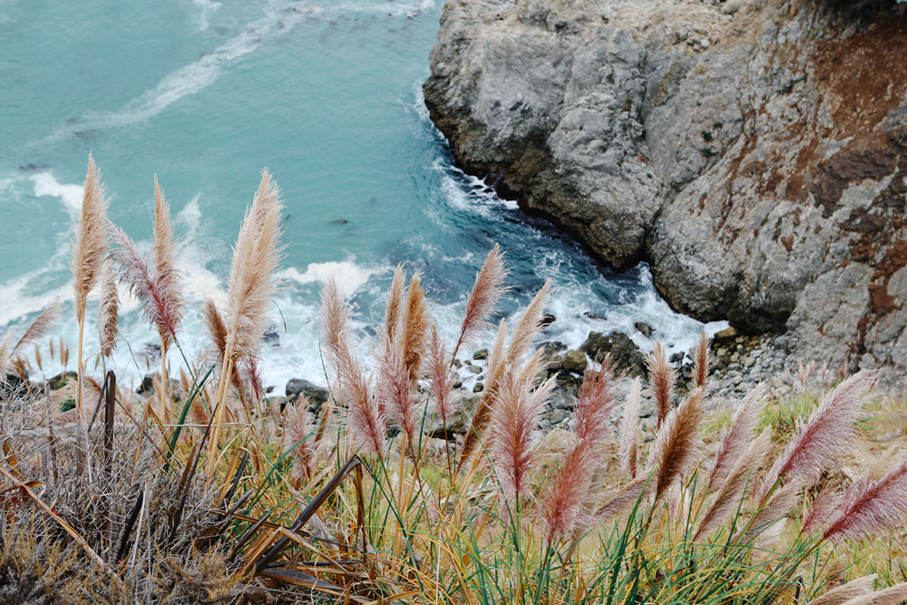 big sur  | jessie webster