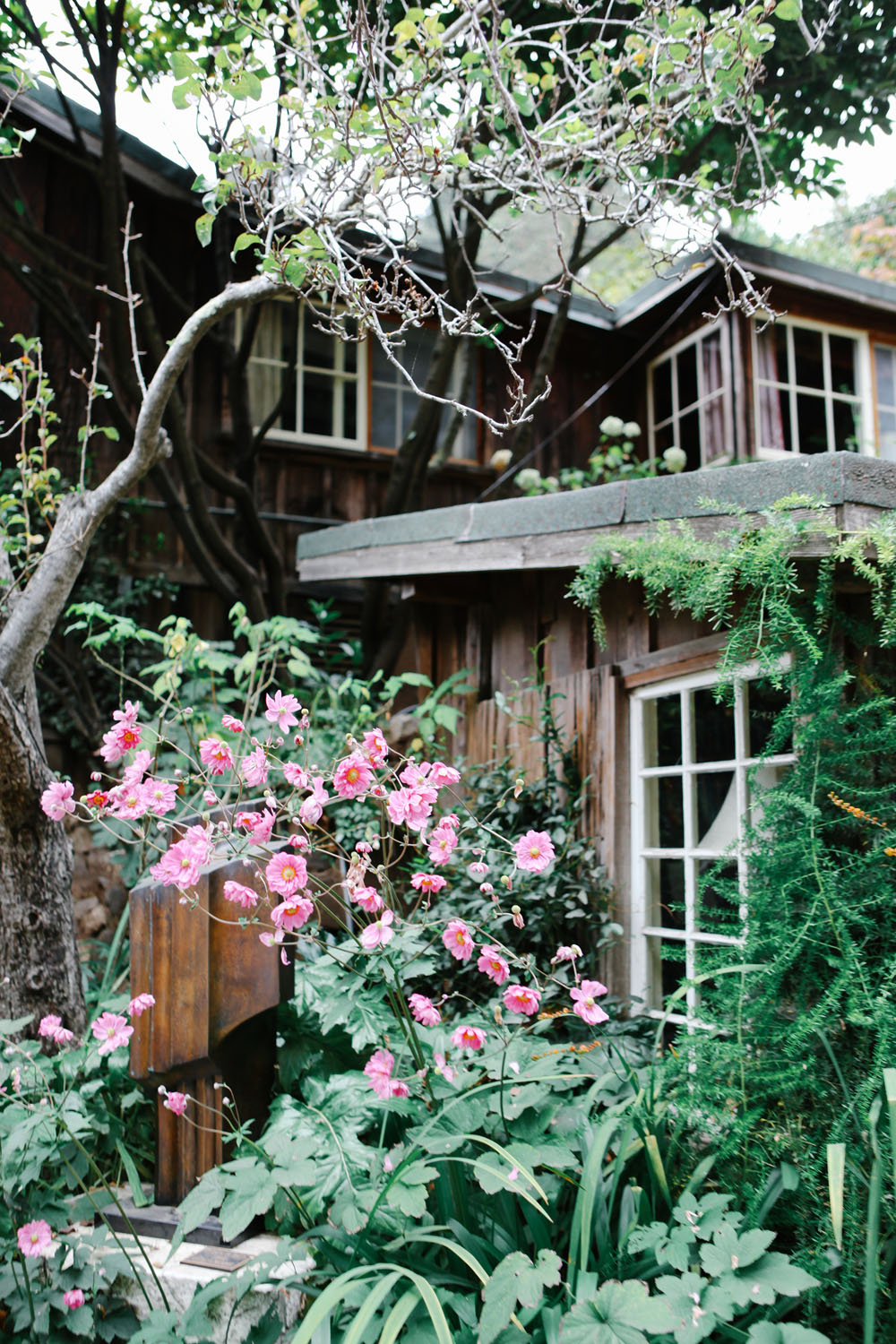 deetjen's big sur inn | jessie webster