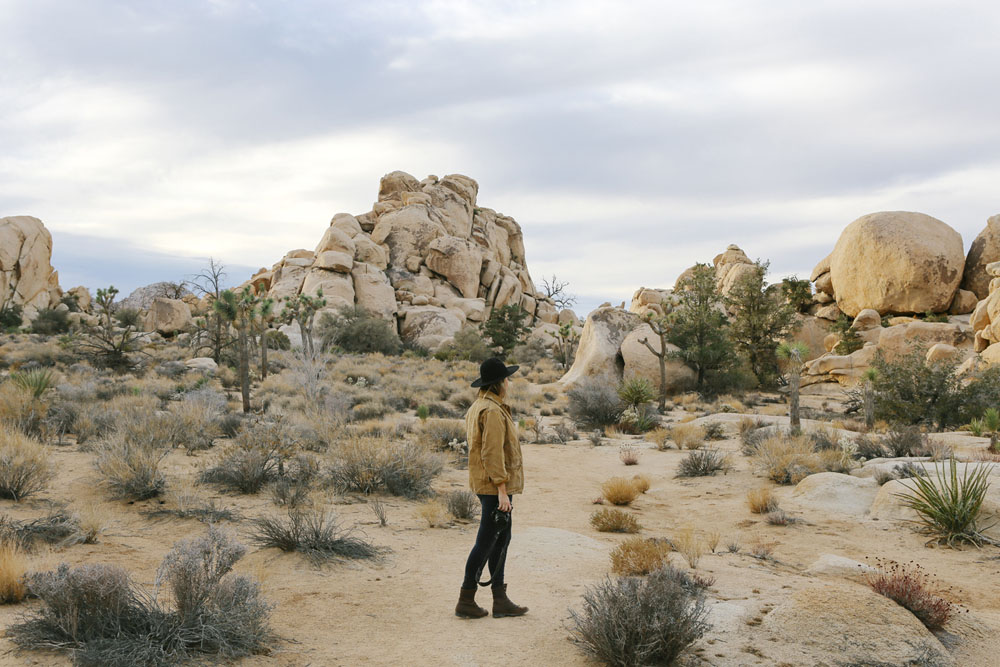 joshua tree | jessie webster