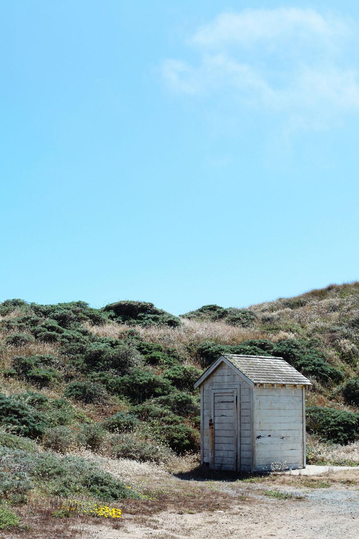 marin county | jessie webster