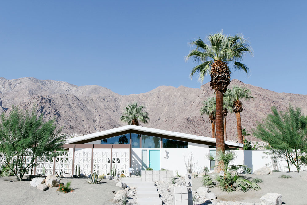 palm springs | jessie webster