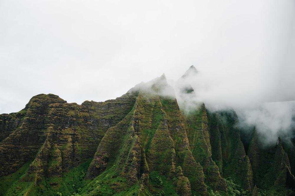 JessieWebster_Hawaii_0545.jpg