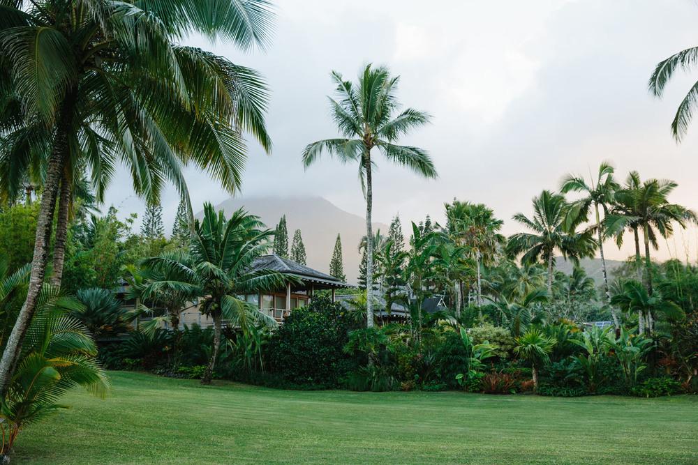 JessieWebster_Hawaii_0665.jpg